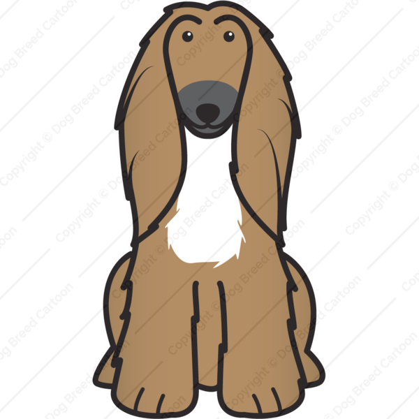 Afghan Hound Cartoon
