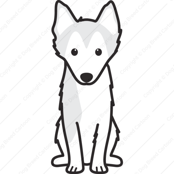 Image of: Draw Alaskan Klee Kai Cartoon Dog Breed Cartoon Alaskan Klee Kai Linear Edition Dog Breed Cartoon Download