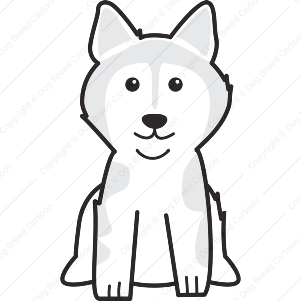 Alaskan Malamute Cartoon