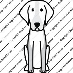 American Foxhound Cartoon