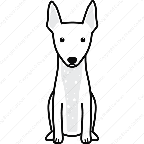 American Hairless Terrier Cartoon