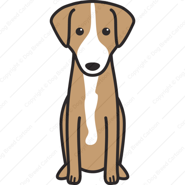 Austrian Shorthaired Pinscher Cartoon