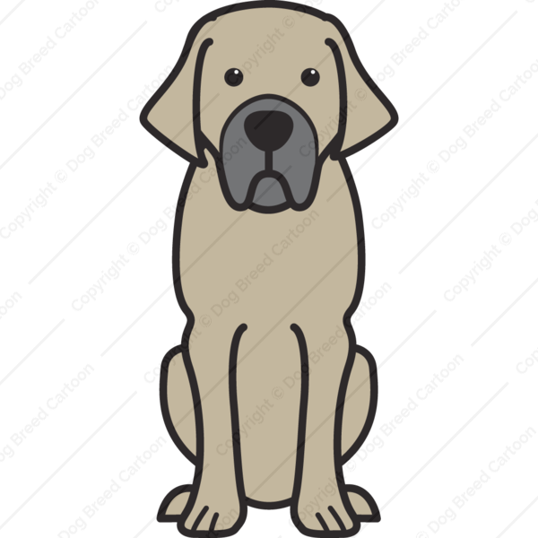 Belgian Mastiff Cartoon