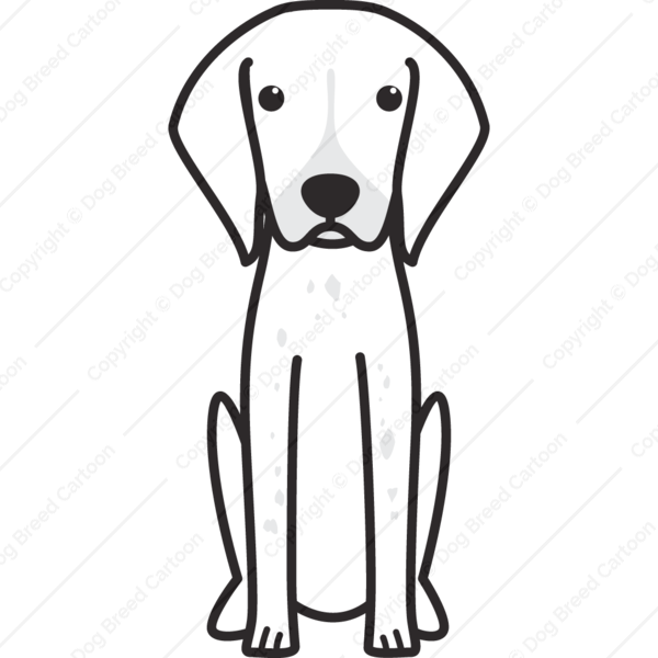 Belgian Shorthaired Pointer Cartoon