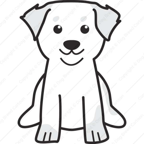 Bernese Mountain Dog Cartoon