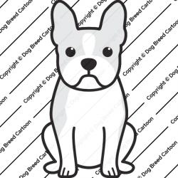 Boston Terrier Cartoon