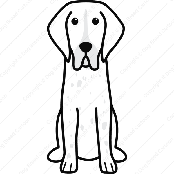 Bracco Italiano Cartoon
