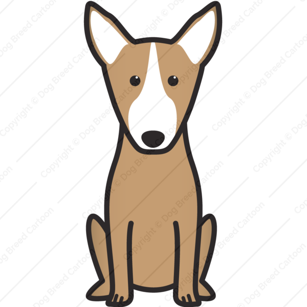 Bull Terrier Cartoon