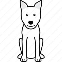 Canaan Dog Cartoon