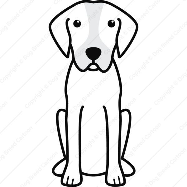 Catahoula Leopard Dog Cartoon
