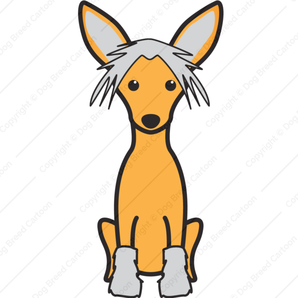 Chinese Crested Cartoon