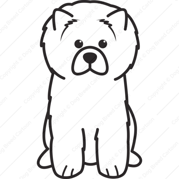 Chow Chow Cartoon