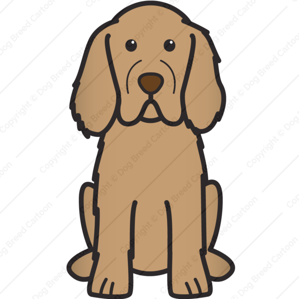 Clumber Spaniel Cartoon