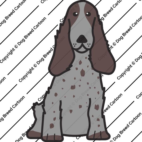 English Cocker Spaniel Black And White Edition Dog