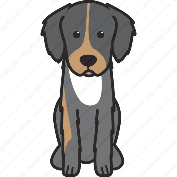 English Shepherd Cartoon
