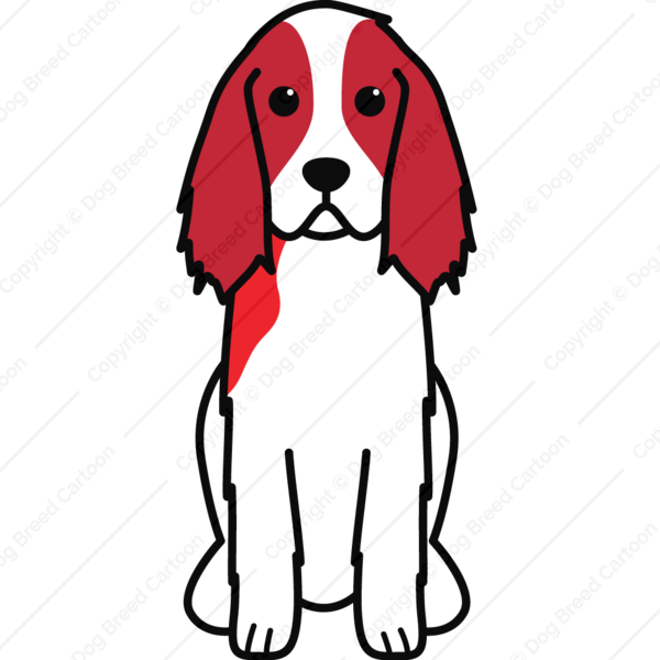English springer spaniel english springer spaniel for English springer spaniel coloring pages
