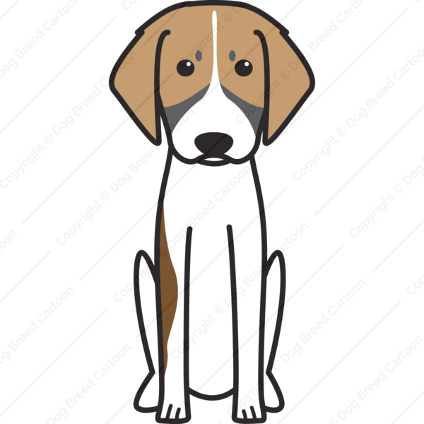 French Tricolor Hound Cartoon