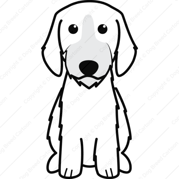 Grand Basset Griffon Vendeen Cartoon