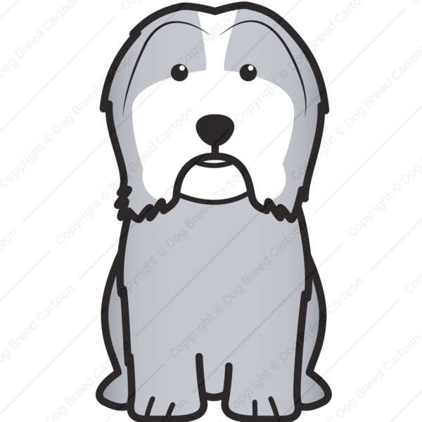 Havanese Cartoon