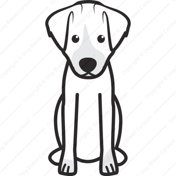 Jack Russell Terrier Cartoon