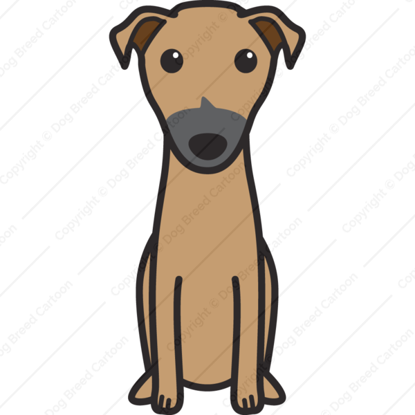 Kangaroo Dog Cartoon