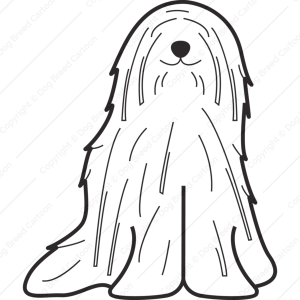 Komondor Cartoon