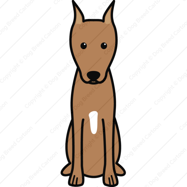 Miniature Pinscher Cartoon