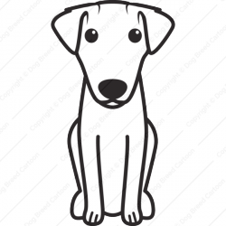 Animal in addition Fumaric acid further Canada additionally Dogbreedcartoon as well How To Help During Tragedy Loss Or Illness. on preferred name