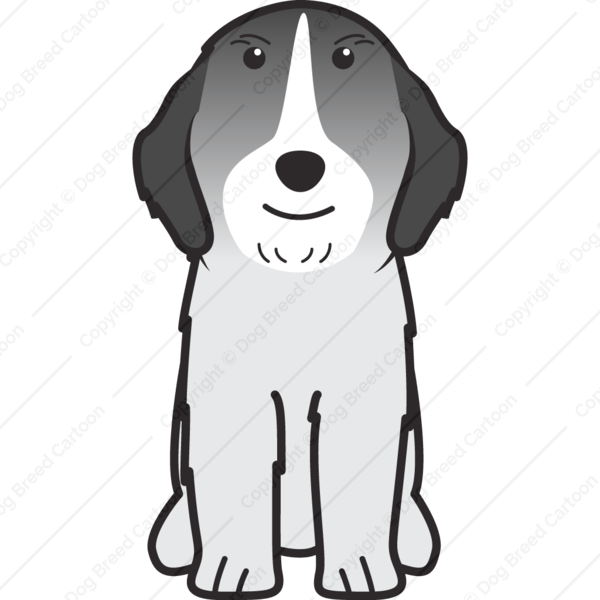 Rumanian Sheepdog Cartoon