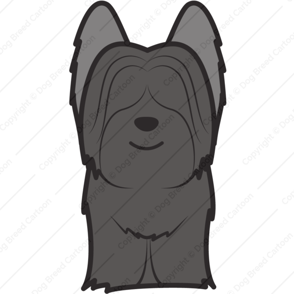Skye Terrier Cartoon