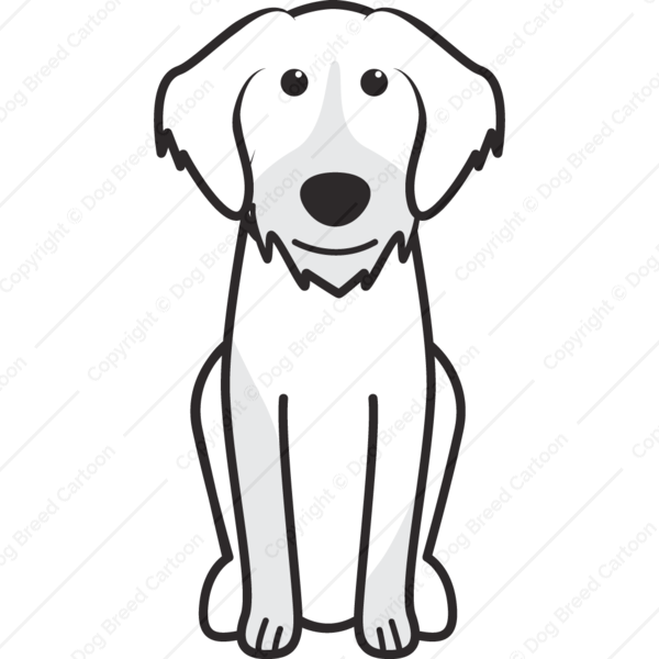 Slovakian Rough Haired Pointer Cartoon