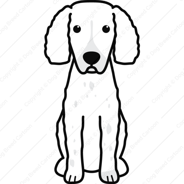 Small Munsterlander Pointer Cartoon