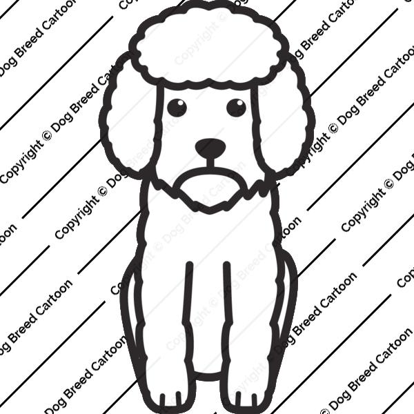 Toy Poodle Cartoon