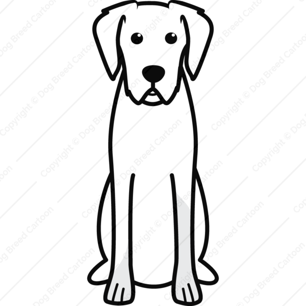 Wirehaired Vizsla Cartoon