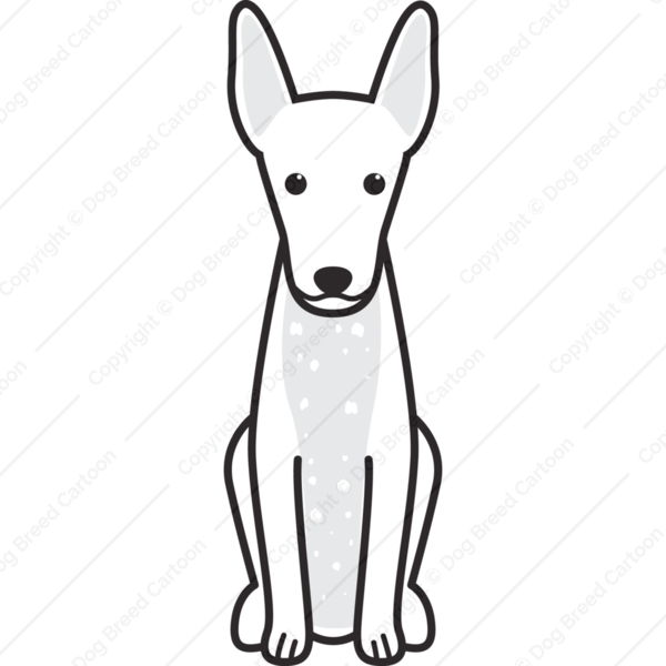Xoloitzcuintli Cartoon