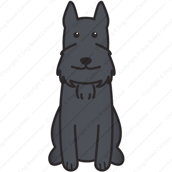 Giant Schnauzer Cartoon