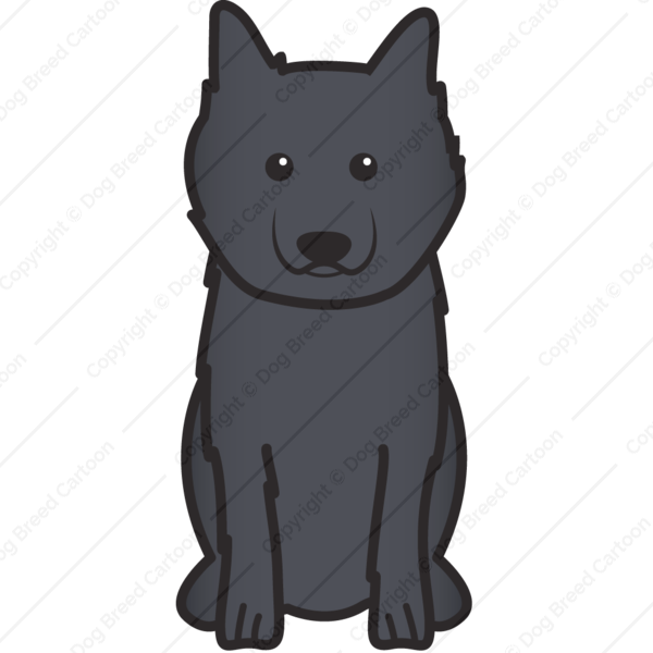 Keeshond Cartoon