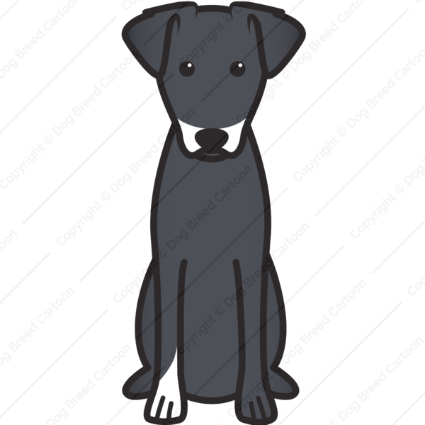 Manchester Terrier Cartoon