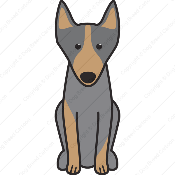 how to draw a kelpie dog