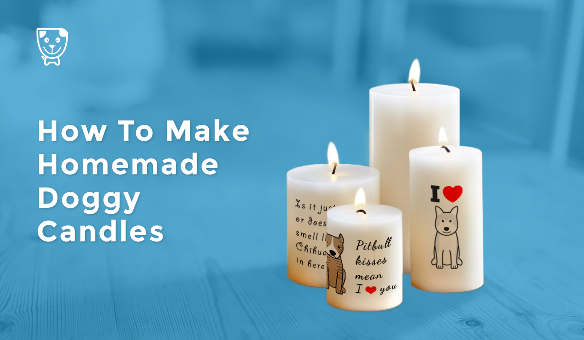 candles dog