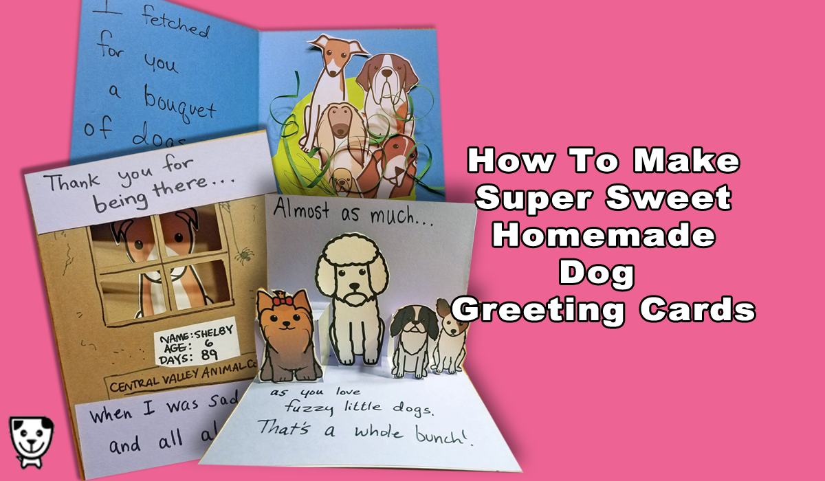 How to make cute homemade dog greeting cards homemade dog greeting cards september 29 2017 m4hsunfo